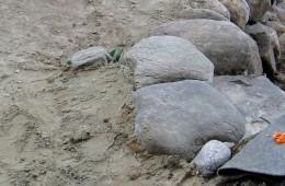 Kiviaskelman rakentaminen 14